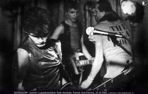 Socrealizm, new wave koncert